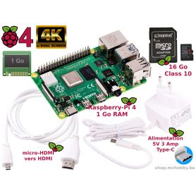 Raspberry Pi 4 1Gb Essential Pack (Pi 4 inclus)