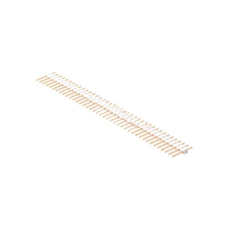 1 x 40 Pin Header Blanc
