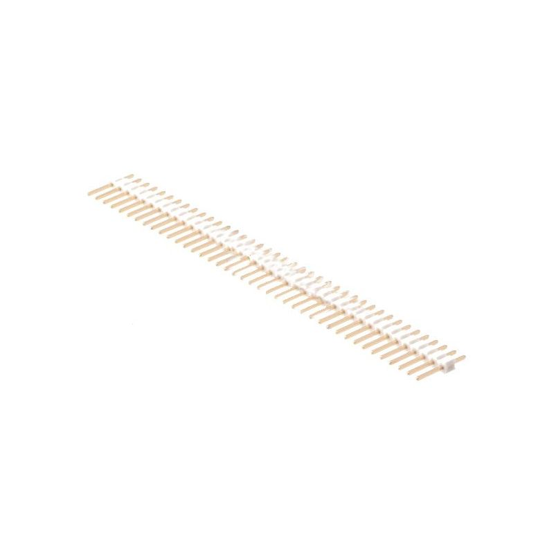 1 x 40 Pin Header White