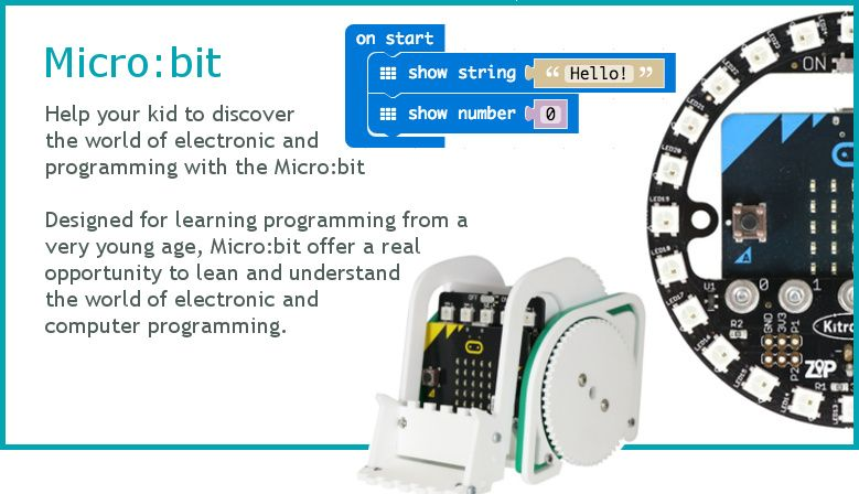 Discover electronic and programming with the Micro:bit