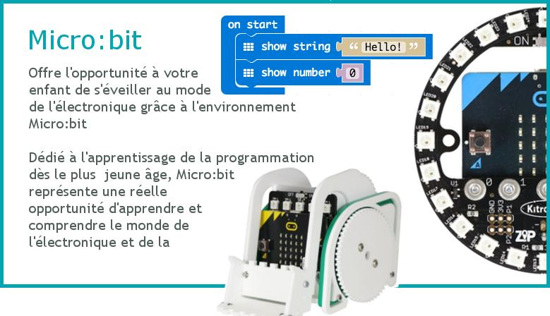 Découvrir l'électronique et la programmation avec le Micro:bit